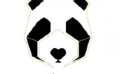 la-fiancee-du-panda-mc2-mon-amour.png